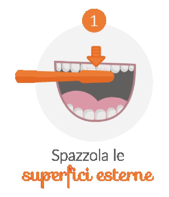 step-igiene-Studio Cemisa-Centro Medico-Torino